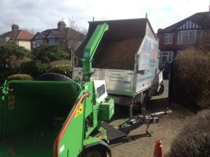 Tree Removal Machinery